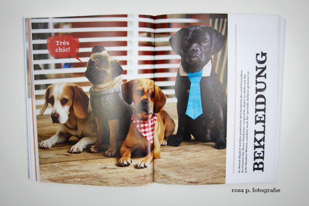 SELBSTGEMACHT! Lieblingsstücke für den Hund | | rosa p.