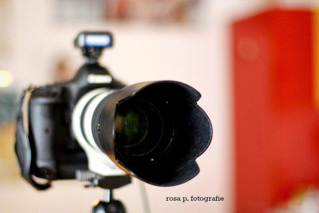 fotoshooting6