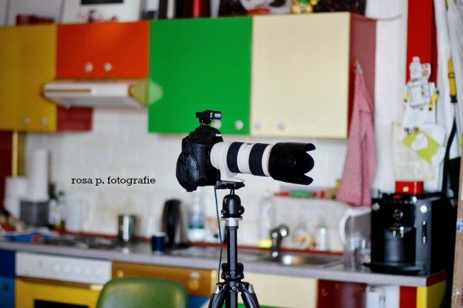 fotoshooting7