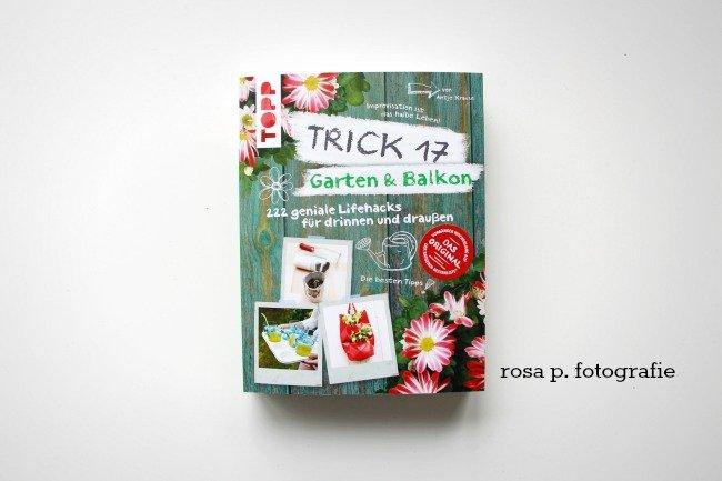 trick17,1
